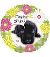 "18"" Thinking of You Dog Box126"