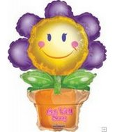 "13"" Airfill Only Get Well Flower Pot"
