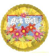 "20"" Get Well Flowers Spongee Butterfly B165"