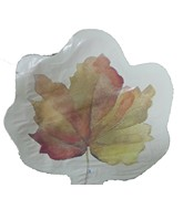 "4"" Maple Leaf  ""shape"""