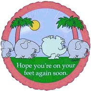 "18"" HopeYou&#39re On You Feet Again Soon Elephants"