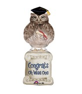 Wise Owl Grad Balloon