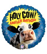 "21"" Two-Sided Packaged Holy Cow Birthday Google Eyes"