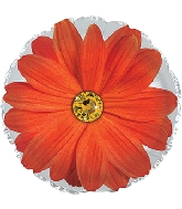 "17"" Orange Gerbera Flower Foil Balloon"