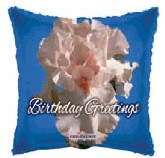 "18"" Iris Birthday Greetings Balloon"