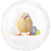 "18"" Photo Easter Chick Clear Balloon"