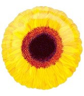 "18"" Yellow Sunflower Mylar Balloon"