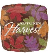 "18"" Autumn Harvest Leaves Balloon"