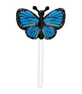 "18"" U-Inflate Blue Butterfly"