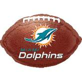 Junior Shape Miami Dolphins Football